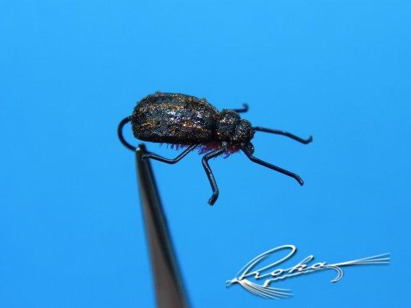 Cytilus Beetle.jpg