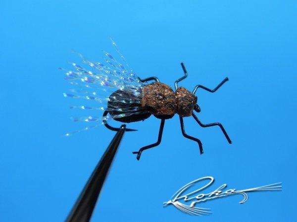 Flying Beetle.jpg